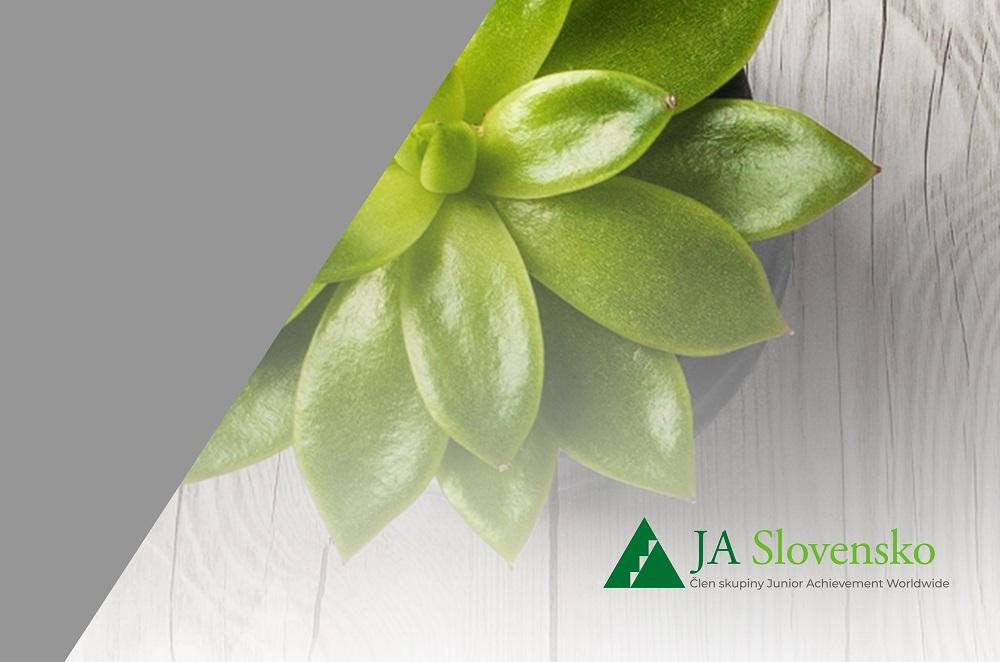 zelený sukulent referencia JA Slovensko