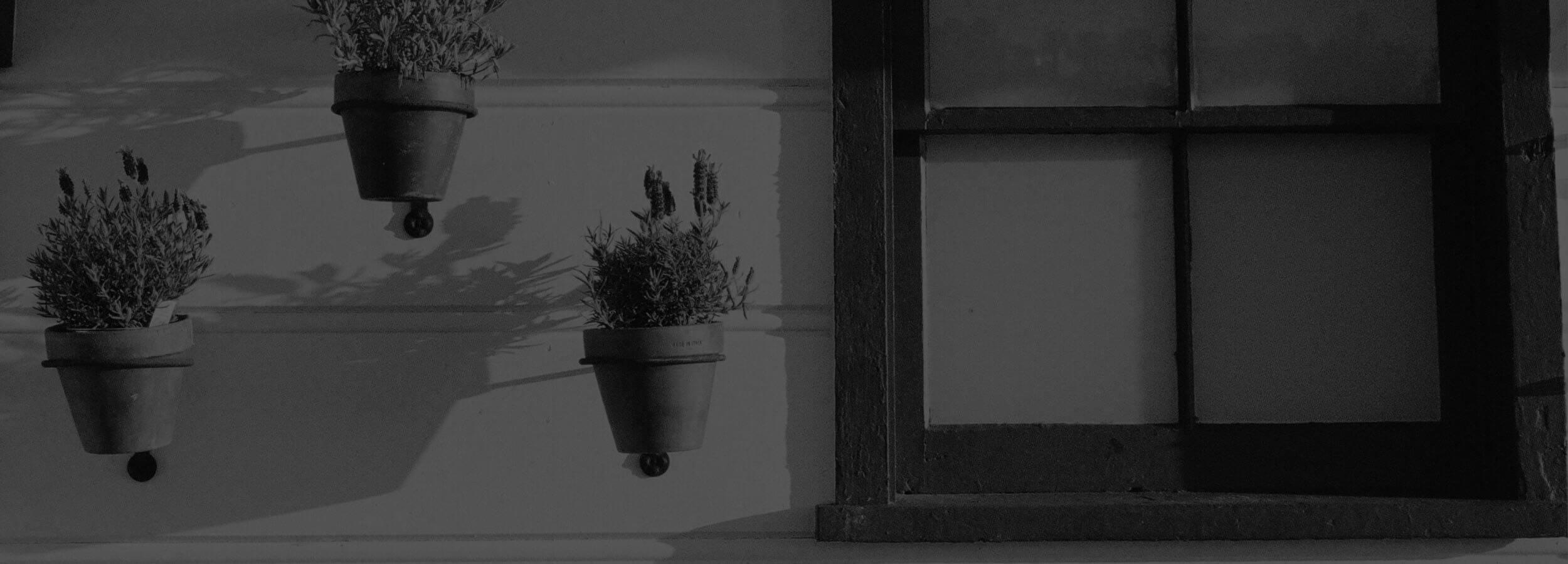 okno a kvetinače