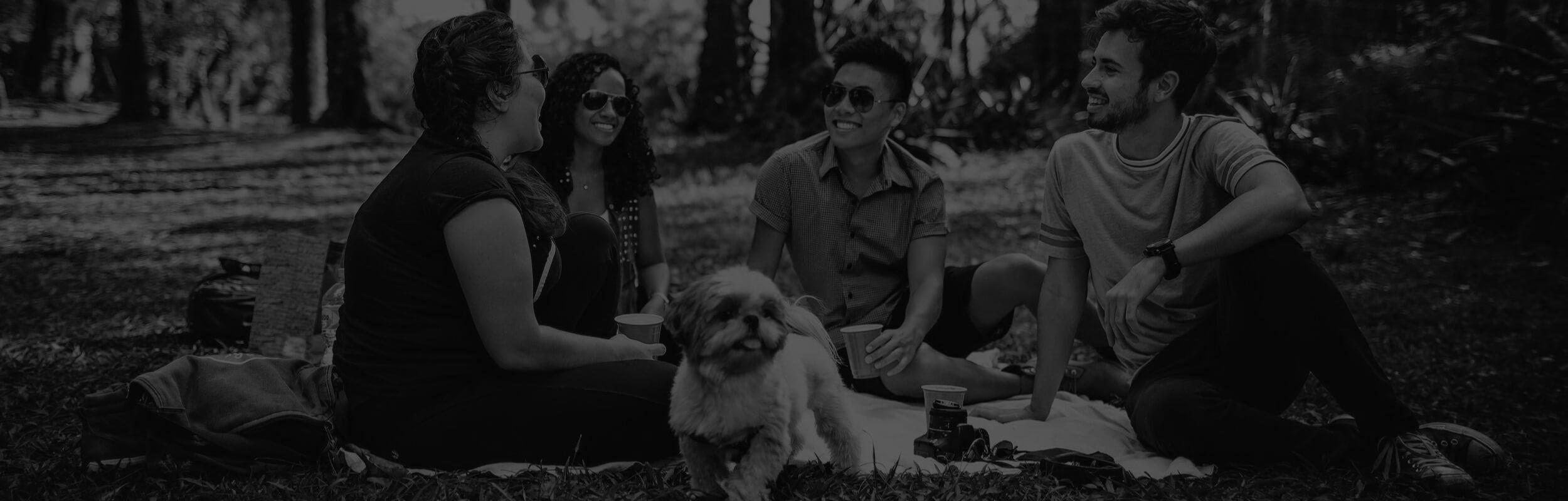 ľudia a pes na pikníku