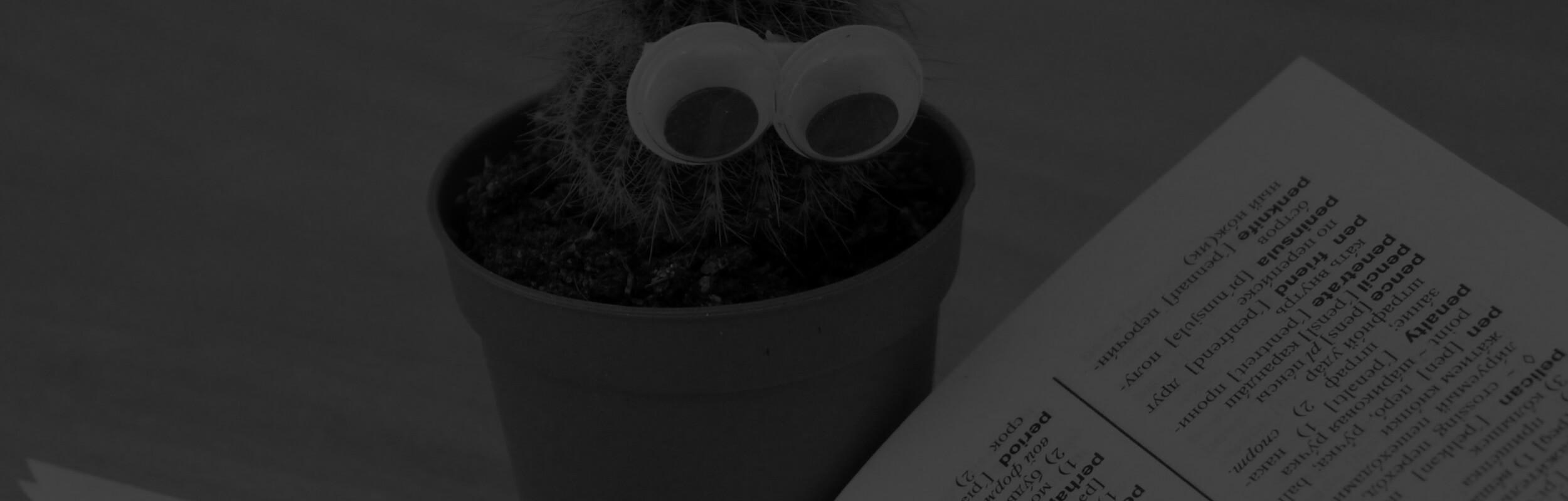 kaktus pozerá do knihy
